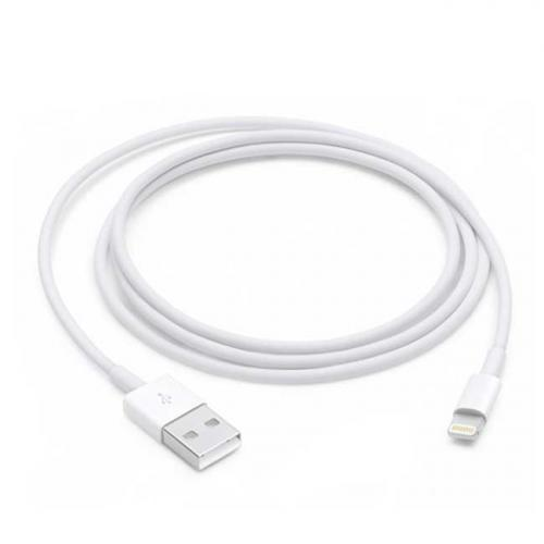 Apple Cable USB - Lightning 1 m